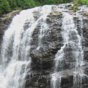 CHARMING COORG G (2)