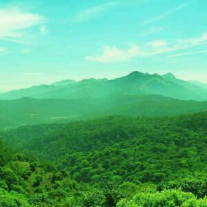 CHARMING COORG G (3)